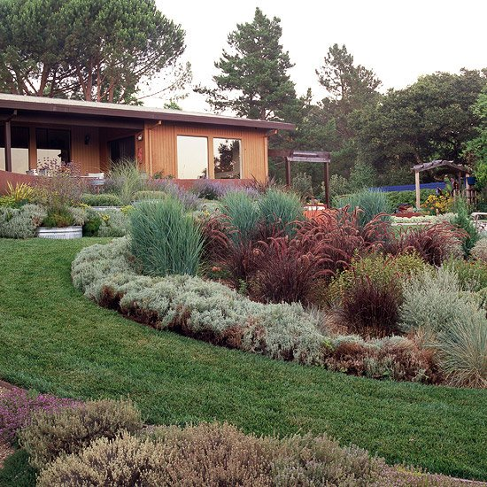 идеи за градината островчета храсти зелено