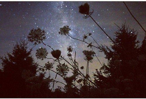 идеи за романтична среща звезди небе