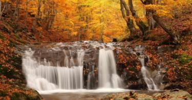 есенни-пейзажи-1