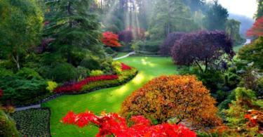 Градината през есента