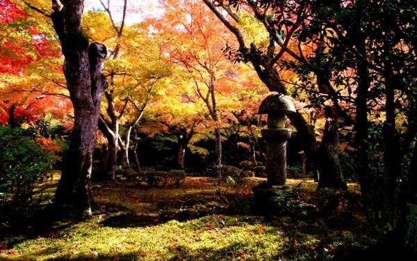 градината-през-есента