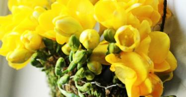 Направи си сам флорална декорация за стена
