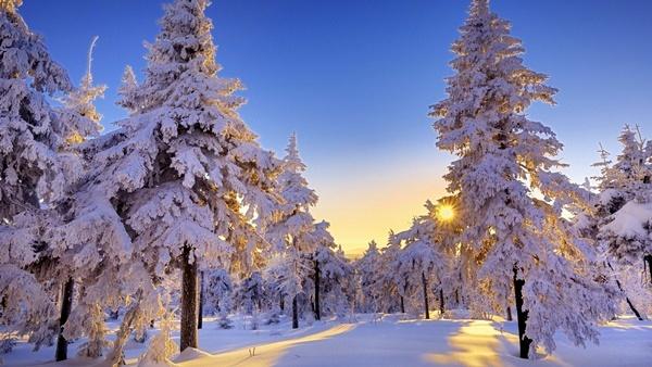 зимни-картини