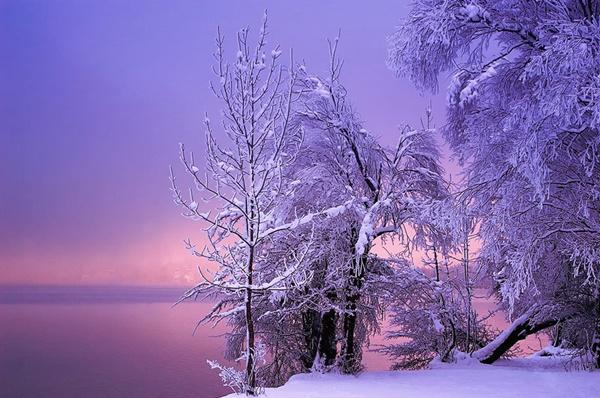 zimni peizaji