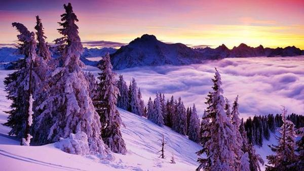 snejni zimni peizaji