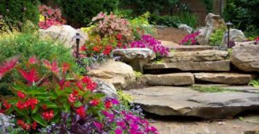 градини-снимки-13