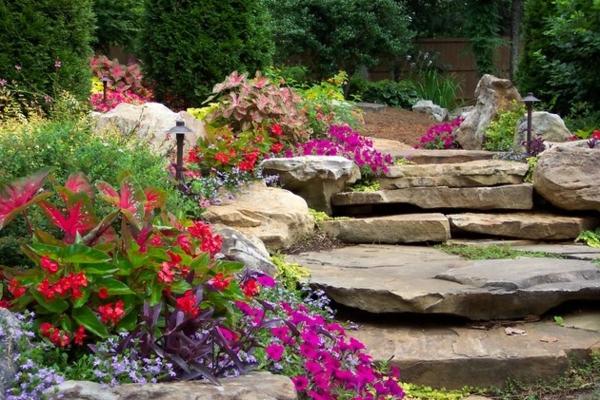 Градини в снимки