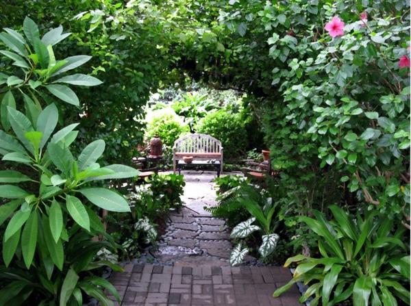 градини снимки