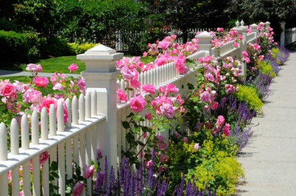 Дървена ограда – различни дизайни за двора