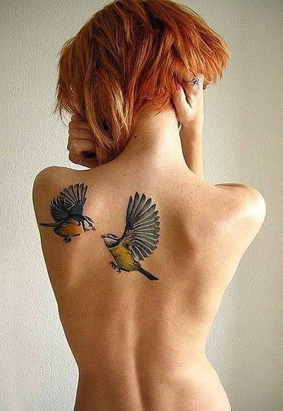 татуси-с-птици