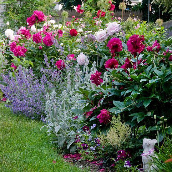 Цветя за градината – перфектна симбиоза от аромат