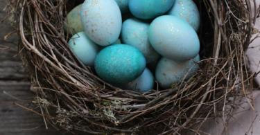 боядисване-на-великденски-яйца