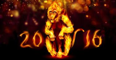 годината-на-червената-маймуна-2016