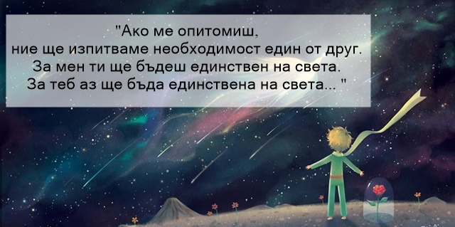 малкият принц цитати