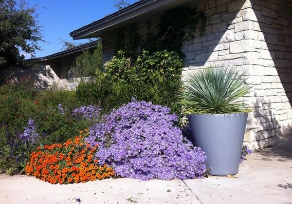 цветна градина в двора