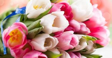 koi-praznuva-na-cvetnica