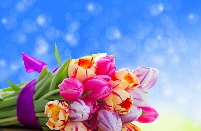 pojelaniq za cvetnica