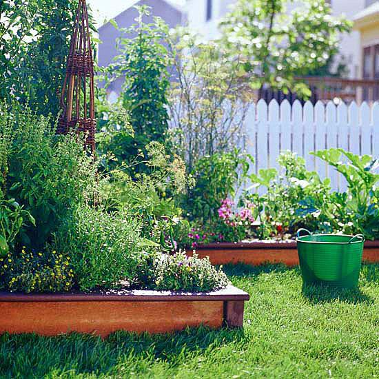 зеленчукова-градина