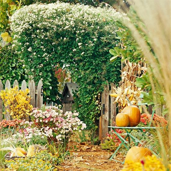 esenni cvetq v gradinata