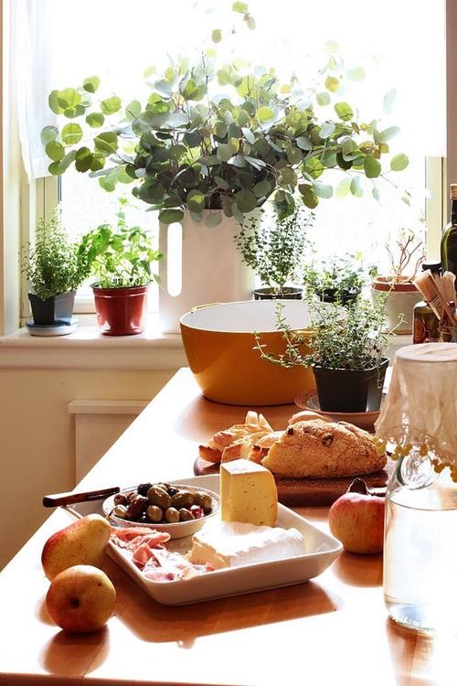 градина с подправки у дома