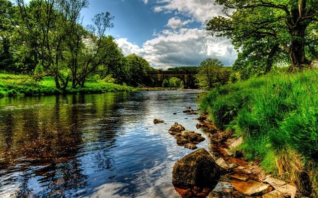 zeleni proletni peizaji