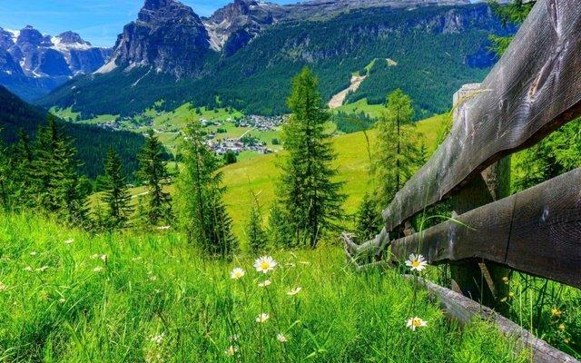 planinski proletni peizaji