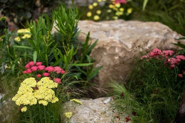 идейки за градината