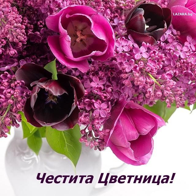 kartichki cvetnica