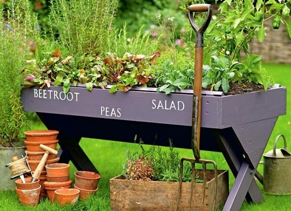 Брилянтни евтини идеи за градина