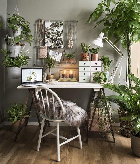 damski ofis u doma s mnogo cvetq
