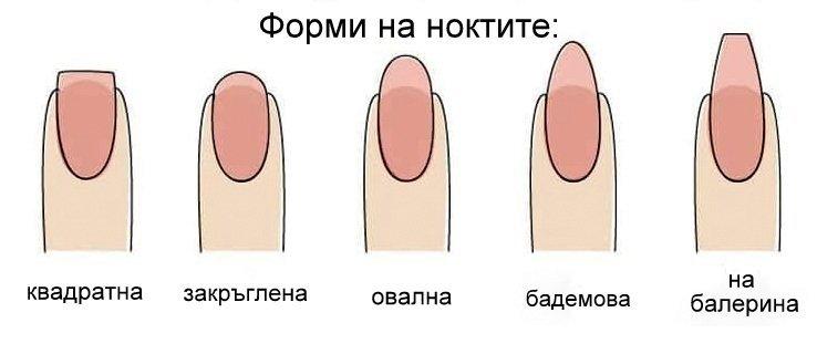 ноктите