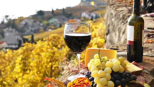 italianska hrana sirena i vino