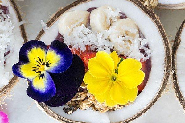 zdravoslovna zakuska s musli plodove v kokos
