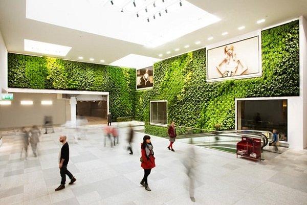 green walls zeleni steni s rasteniq