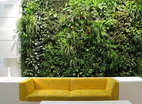 zelena stena s rasteniq za doma