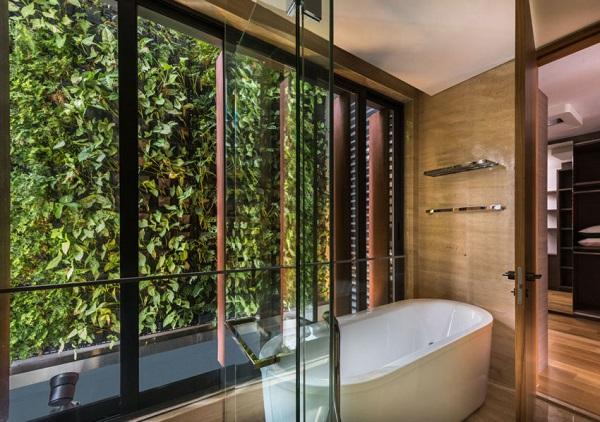 zeleni steni s rasteniq za banq