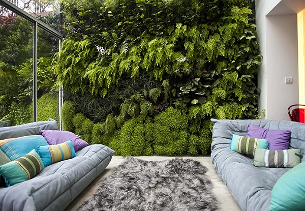 green walls zeleni steni