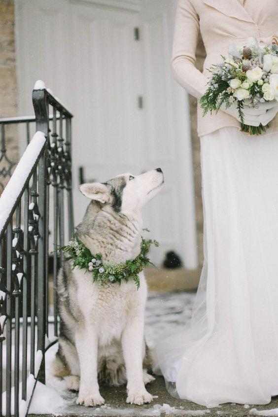 nasheto kuche na svatbata