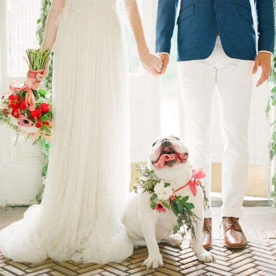 kucheta na svatbata