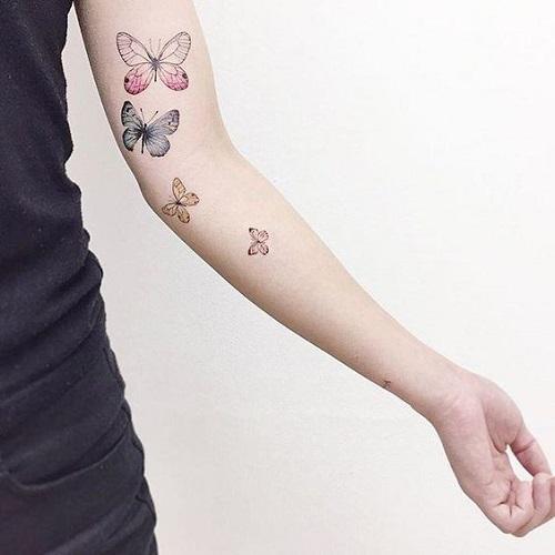 tatus cvetni peperudi