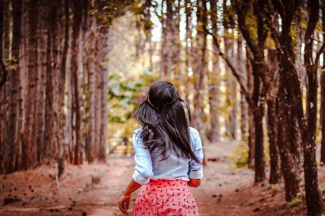 съновник разходка в гората