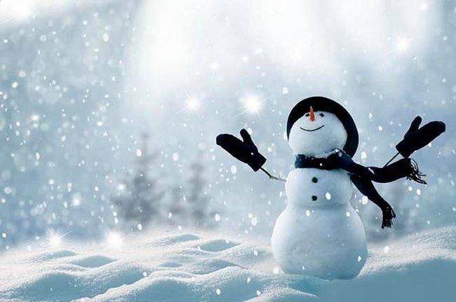 съновник вали сняг